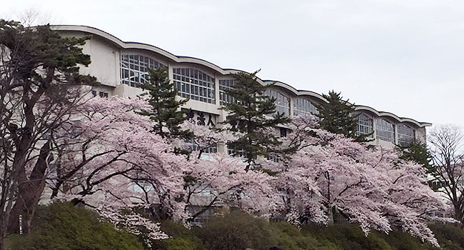 sensyu_spring1