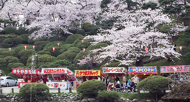 sensyu_spring3