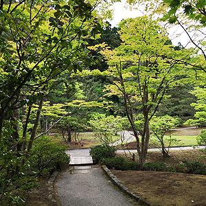 koizumi_4