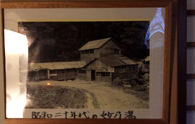 taenoyu14