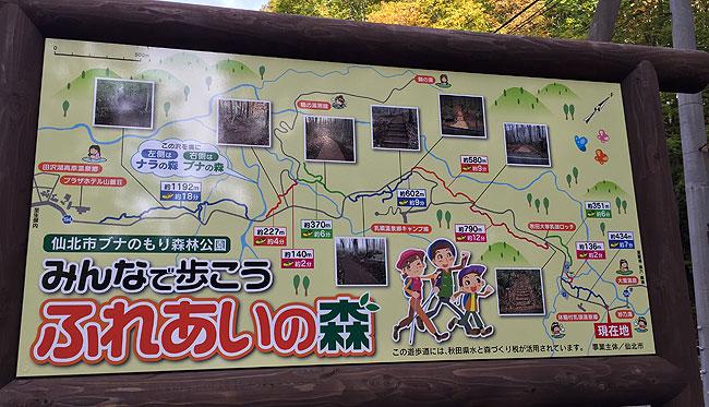 taenoyu3